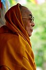 tawa. HH Dalai Lama, northern india by tim buckley | bodhiimages photography