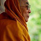tawa. HH Dalai Lama, northern india by tim buckley   bodhiimages
