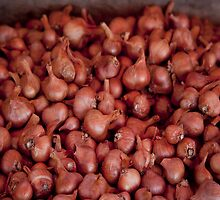 Shallots, Ferry Building Farmers Market,  by SolanoPhoto