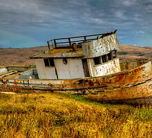 Point Reyes, CA by SolanoPhoto
