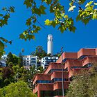 Coit Tower by Brian Leadingham
