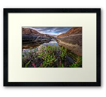 Bloom in the Rock Canal-Wide Framed Print