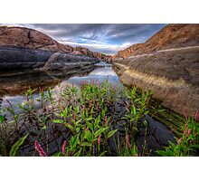 Bloom in the Rock Canal-Wide Photographic Print