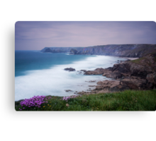 Sea Thrift at Pentreath Canvas Print