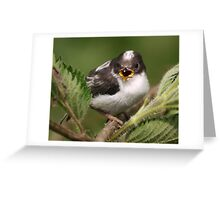 Sing for your supper... Greeting Card