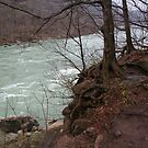 Niagara downriver by tanmari