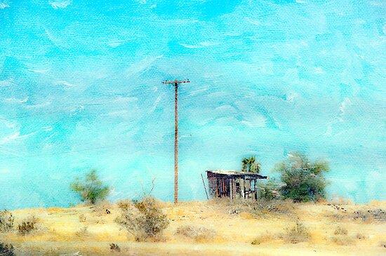 California Shack by Mary Ann Reilly