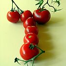 T is for TOMATOES! by Jean Gregory  Evans