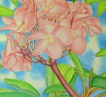 Pink Frangipani by joeyartist