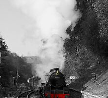 Choo Choo!!! by Graham Ettridge
