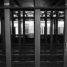 live subway by greg angus