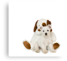 Westie Pup and Teddy Bear Canvas Print