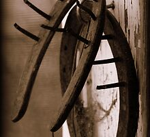Horse shoes by SusanJane