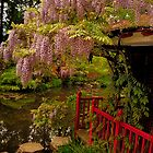 Wisteria At The Summer House by delros