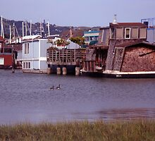 houseboats in sausalito,ca by califpoppy1621