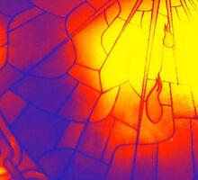 Through a Glass Brightly by Brian Varcas
