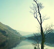Llyn Gwynant by nadine henley