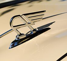 Austin Hood Ornament by gordonspics