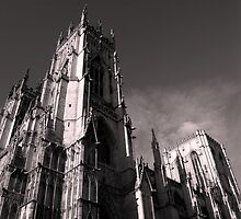 York Minster by stuwdamdorp