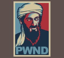 PWND - Osama Bin Laden by Vincent Carrozza