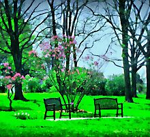 Sitting In The Park by Linda Miller Gesualdo
