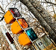 Traffic Light by Amy Francen