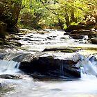 Another Pontypridd River Scene by maffikus