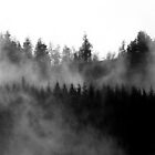 Misty Rhondda Mountain Scene by maffikus