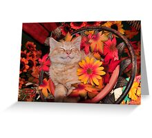 Good Morning Smile ~ Cute Kitty Cat Kitten in Fall Colors taking a Nap Greeting Card