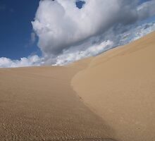 Endless Dune by Driussi