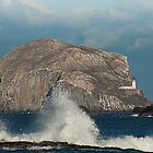 Bass Rock North Berwick by KWTImages