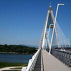 Megyeri.bridge.over.Danube.river_Hungary/Europe2011MAY07pic1 by ambrusz