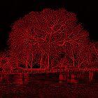 Rouge by peterrobinsonjr