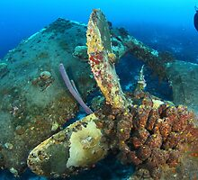 Propeller on the Hilma Hooker by Rich Synowiec