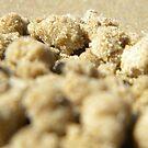 Beach Balls by Carol James