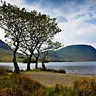 Crummock Water, Cumbria. UK by David Lewins LRPS