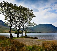 Crummock Water, Cumbria. UK by David Lewins