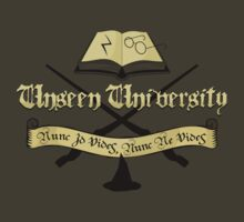Harry Potter at Unseen University by robotrobotROBOT