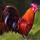 Rooster by Jerry L. Barrett