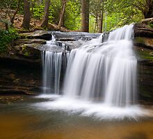 Waterfall on Carrick Creek - Table Rock State Park by Dave Allen