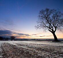 Crack Of Dawn by DaveBrightwell