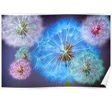 Dandelion Delight Poster