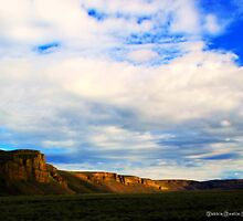 Coulee Day by Debbie Roelle