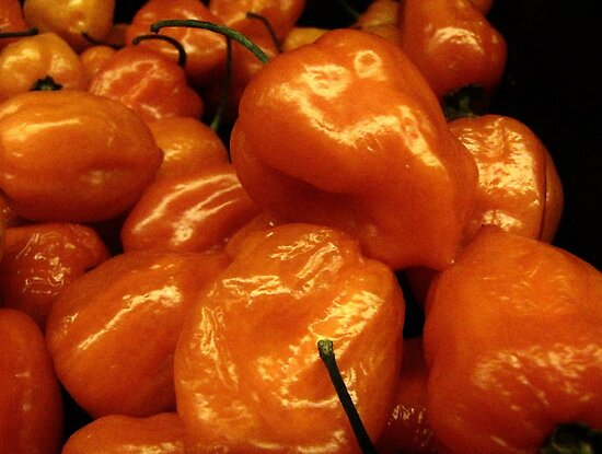 Orange Peppers....... by trueblvr