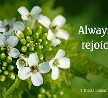 Always Rejoice ~ 1 Thessalonians 5:16 (1 of 3) by Robin Clifton
