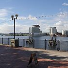 Cardiff Bay View over the water by cofiant