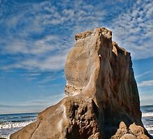 Fish Rock by vincefoto