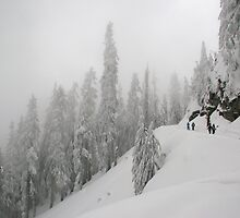 Grouse Mountain Snowshoeing  by Anna Vegter