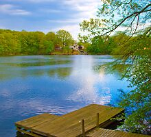 Brady Lake Dock by DmitriyM