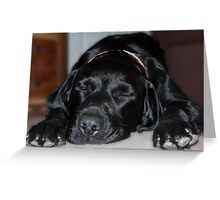 Dog tired!!!! Greeting Card